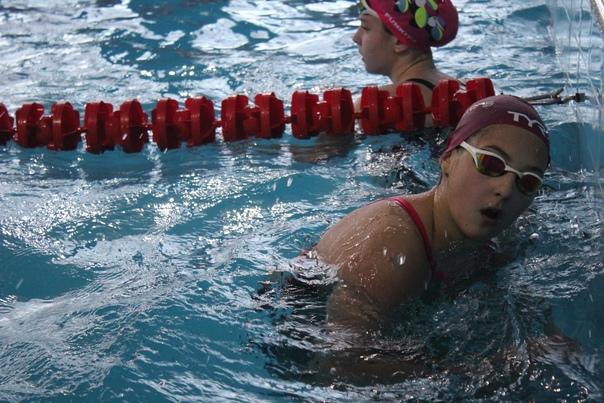 Открытый чемпионат по плаванию Минской области на короткой воде, 07.12.2020г., изображение №1
