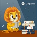 Дни доступа в Premium Lingualeo (600 дней).