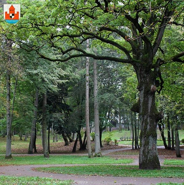 Городской парк Якобсруэ был открыт в 1823 году  На его территории находятся несколько памятников - королеве