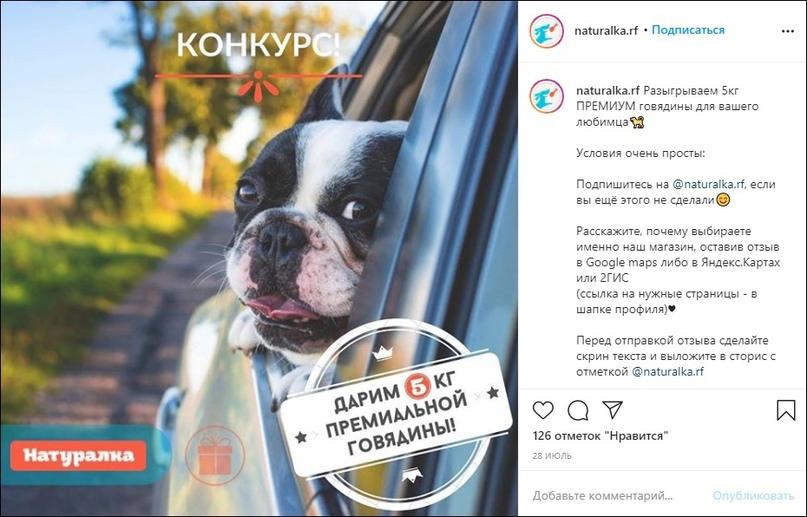 1300 продаж и 1500 подписчиков для интернет-магазина зоотоваров в Instagram, изображение №46