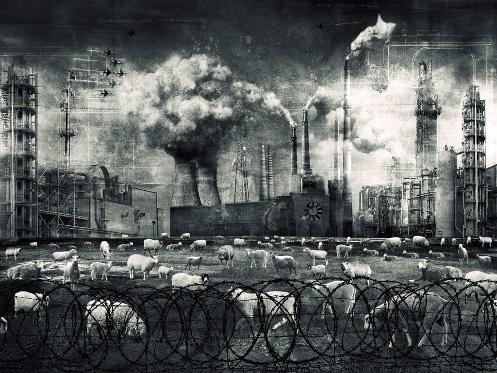 фото из альбома Валерии Кольцовой №4