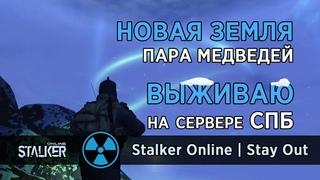43. Новая Земля. Пара медведей. Сервер СПБ. Сталкер Онлайн | Stalker Online | Stay Out
