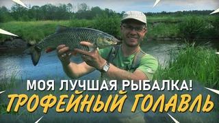 Лучшая рыбалка на голавля. Трофеи малой реки