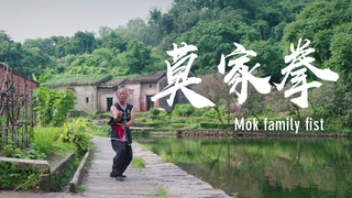 Mok family martial art: Defense with a powerful kick #ChinaKungfu