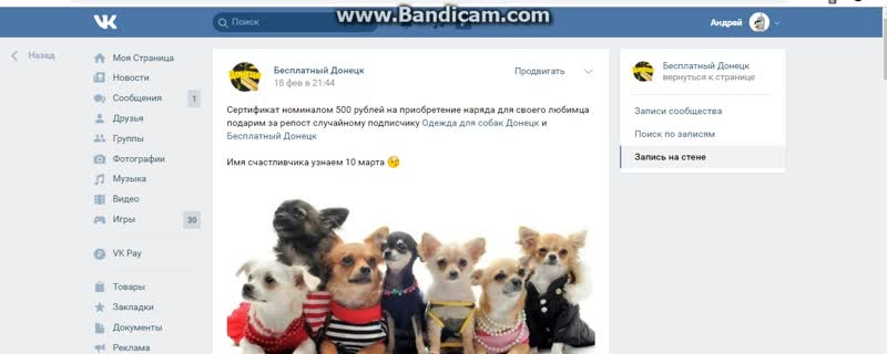 Розыгрыш 10 03 2019 (Одежда для собак)