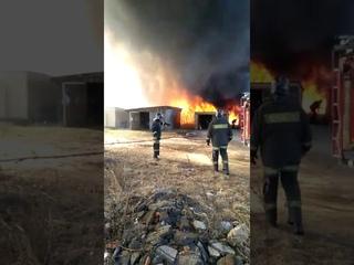 В селе Григорьевское из за пала травы сгорели хозпостройки