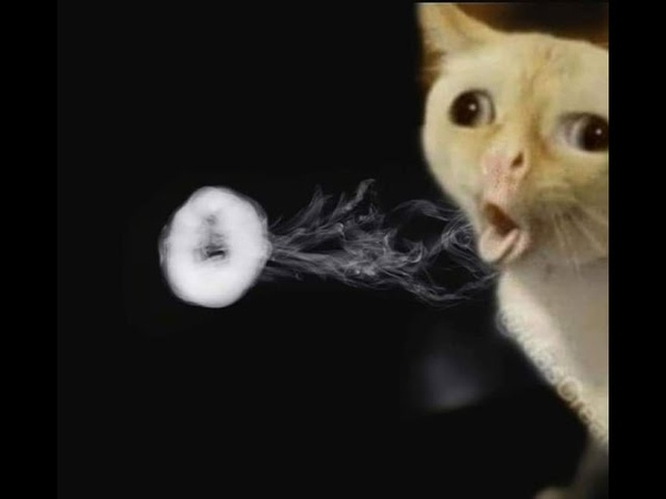 VAPE TRICKS A selection of the best videos ВЕЙП ТРЮКИ ПОДБОРКА CLOUDY VAPE
