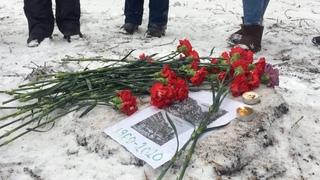 Похороны деревьев в Марфине: застройщики и чиновники против людей