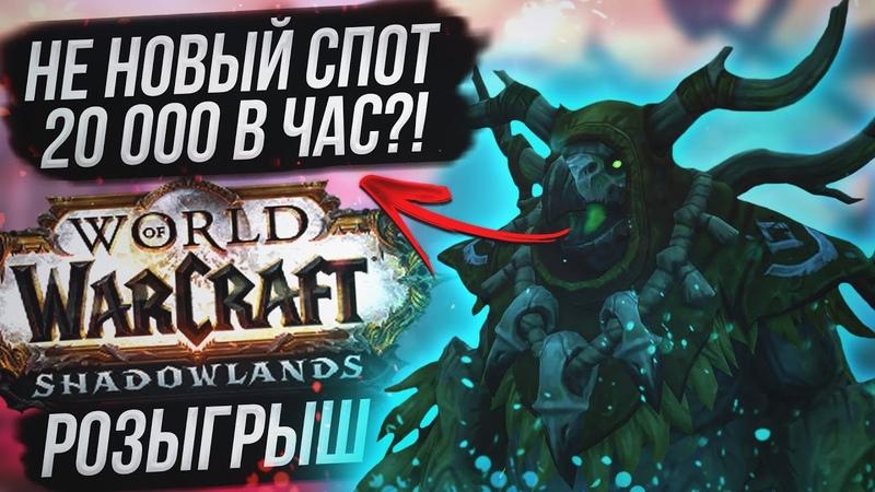 Не новый спот 20 000 золота в час Розыгрыш Shadowlands Epic Edition WoW Shadowlands 9 0 1