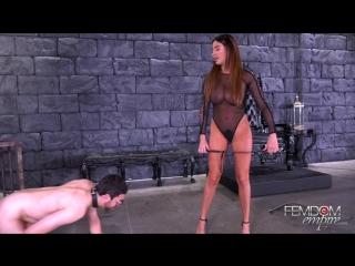 anissa kate (nut buster / ) [2018 г., femdom, brunette, big tits, high heels, ballbusting, 1080p]