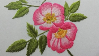 How to Embroider Rosehip | Long and Short Stitches | Wool Embroidery