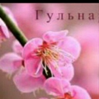 Личная фотография Гульнары Рахметовой