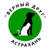 """Группа Астраханского приюта """"Верный друг"""""""