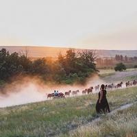 Фотограф Ушакова Анна