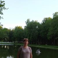 Фотография страницы Надежды Шеиной ВКонтакте