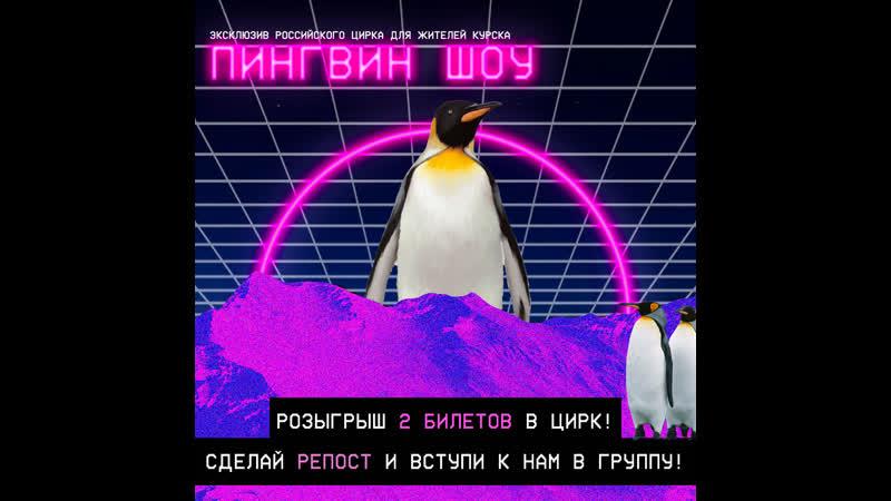 2 билета в цирк на Пингвин шоу