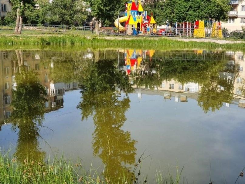 В Самарской области водоемы начали чистить микроводорослями