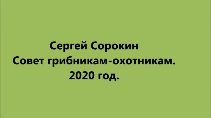 Сергей Сорокин Совет грибникам охотникам и прочим бездельникам
