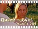 Дикий табун! .(Украина 2003-г.).